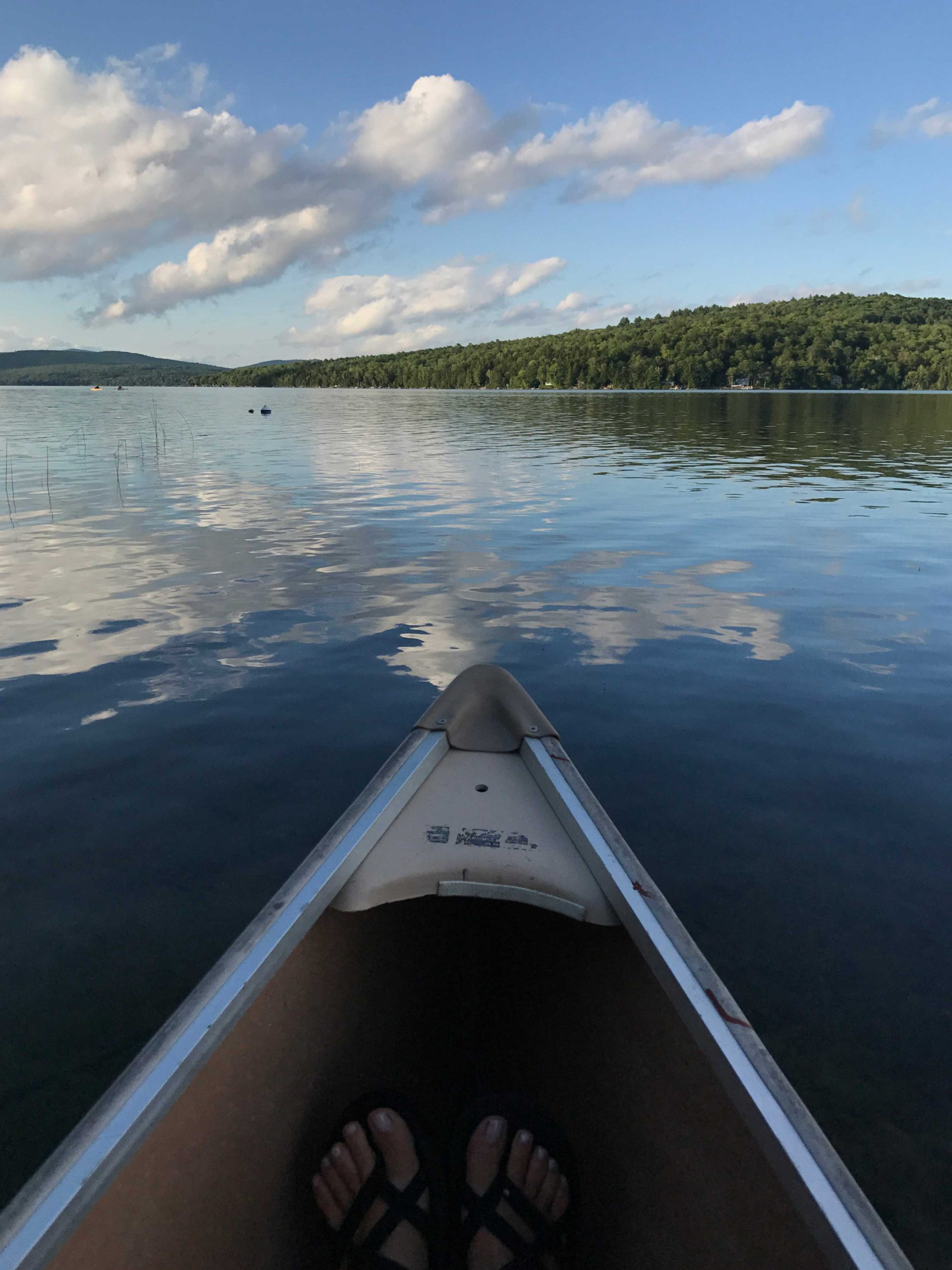 Image of canoe on a lake next to more details about the practice of Dr Wendy Ellis, ND